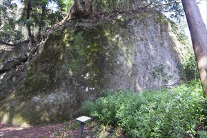大きな岩。何やら言われがあるよ...