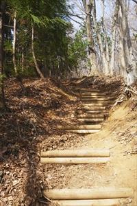 緩やかな階段が小さな尾根上に続...