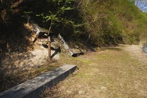 さぁ、ココからが本格的な山道に...