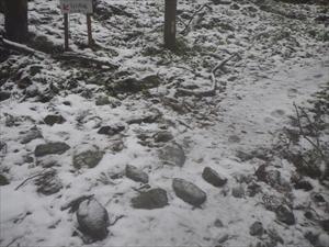 あっ! 雪だ・・・。先ほどのみ...