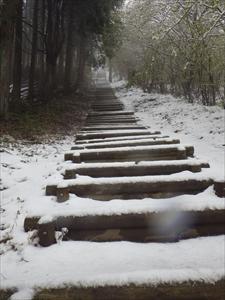 長い階段・・・。...