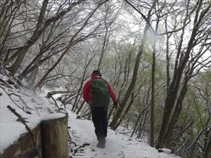 新雪に足跡を付けていく。...