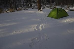 再びテントに戻って・・・...