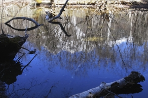 古池に映った明神岳。...