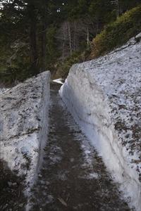 まだまだ雪が残っている箇所があ...
