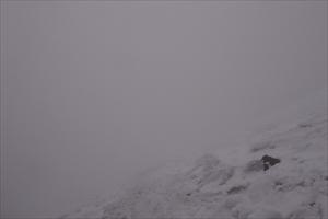 雪渓の上部に到着。本当はシリセ...