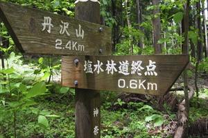 林道終点まであと600m。いつ...