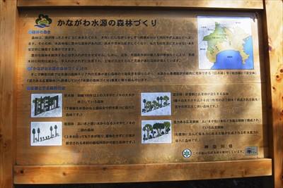 神奈川は今後何年かかけて森を針...