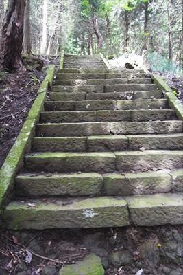 階段出現。さりとてやることも無...