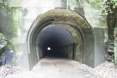 これが山の神隧道。中央のトンネ...