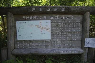 赤坂山一角はわりと道が整備され...