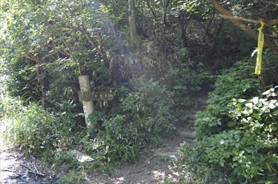 林道を少し歩くと、右側に登山道...