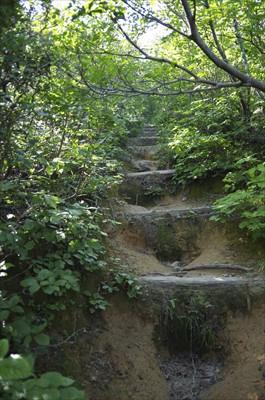・・・最後、真っ直ぐな急な登り...