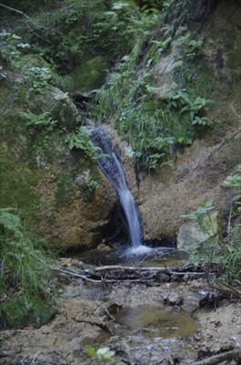 ・・・水量の豊富な水場がすぐそ...