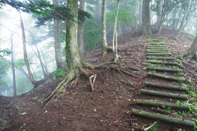 右上の尾根の木の階段を下ってき...