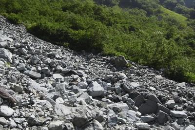 岳沢小屋のテント場は岳沢の左岸...