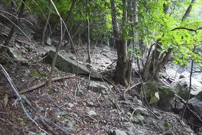 さて、ここからが本格的な登山道...