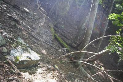 一部道は斜面の上からの崩落物で...