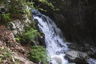 最初の滝です。この辺りはまだ大...