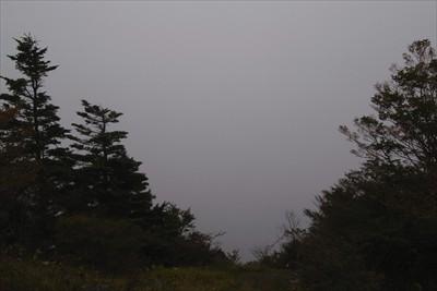 この方向に富士山が・・・見えね...