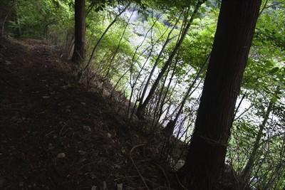 右下に林道が見えてきた。...