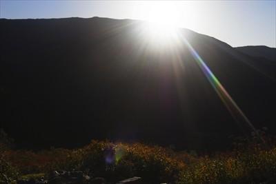 稜線から太陽が顔を出しました。...