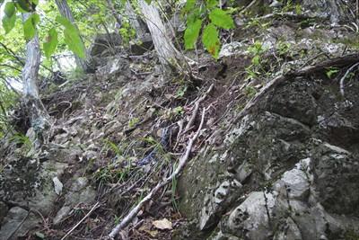 途中、小さい岩に行く手を阻まれ...