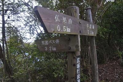 秋葉山への分岐。...