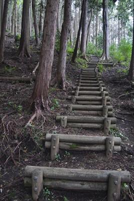 ここの階段は何度歩いても好きに...