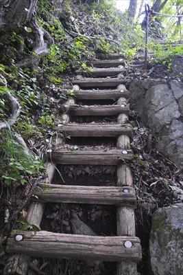 階段もあります。...