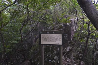 じゃまっけ石。登山道のど真ん中...
