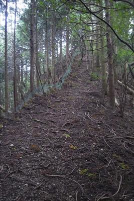 ・・・こっちはこれから登る所で...