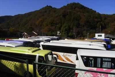観光バスが一杯・・・ここに写っ...