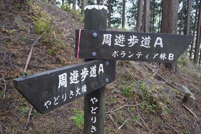 この辺りはルートが何本かあるよ...