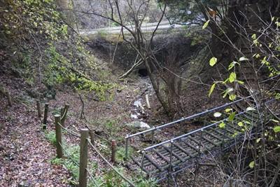 最後の橋の向こうに、林道が見え...