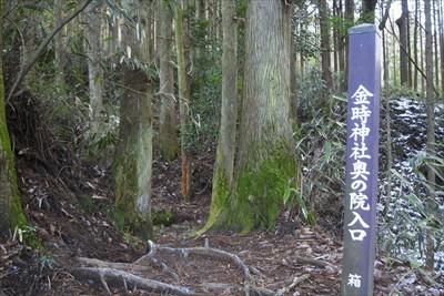 登山道右側に「金時神社奥の院入...