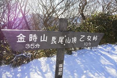 と思ったら、ここが長尾山の山頂...