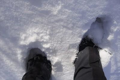 チョット雪が深くなってきた・・...