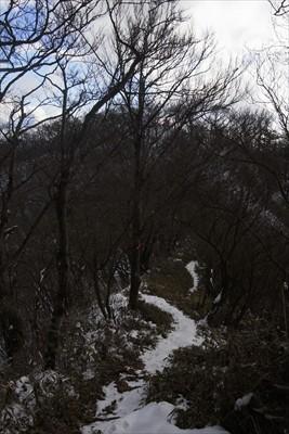 ・・・菰釣山の山頂が見えてきま...