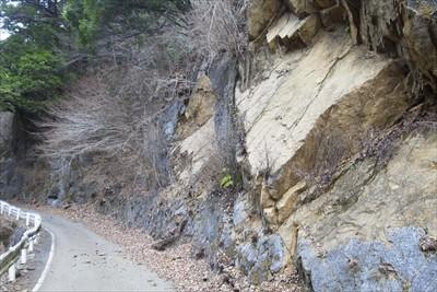 この林道、以前にも大きく崩れた...