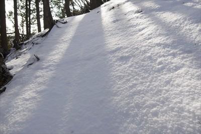 まっさらな雪。足跡を付けるのが...