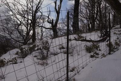 鹿柵が見えたら日高はあと少し。...