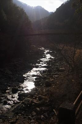 本谷川の川面に太陽が反射してキ...