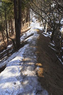 主脈を進む。雪、少ないな〜。...