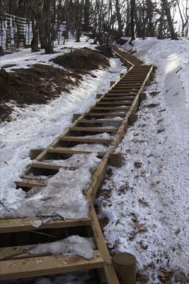 階段、でもここのは段差が低いの...