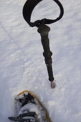 ストックにスノーバスケットを付...