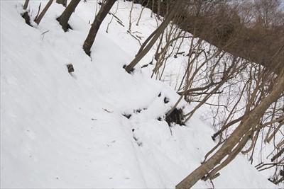 雪の斜面をトラバースする。右側...