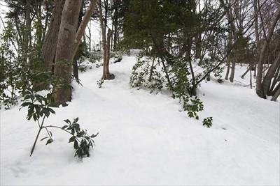 ・・・雪の斜面は怖いので、ピー...
