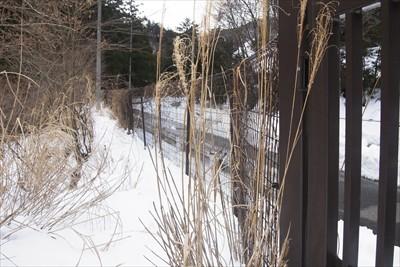 県道に出るには、ゲートの左を5...