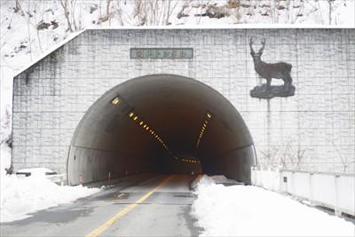 向山トンネル。ここを超えればゴ...